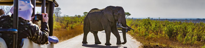 Unsere Reisen nach Südafrika im Überblick