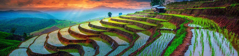 Unsere Reisen nach Vietnam im Überblick