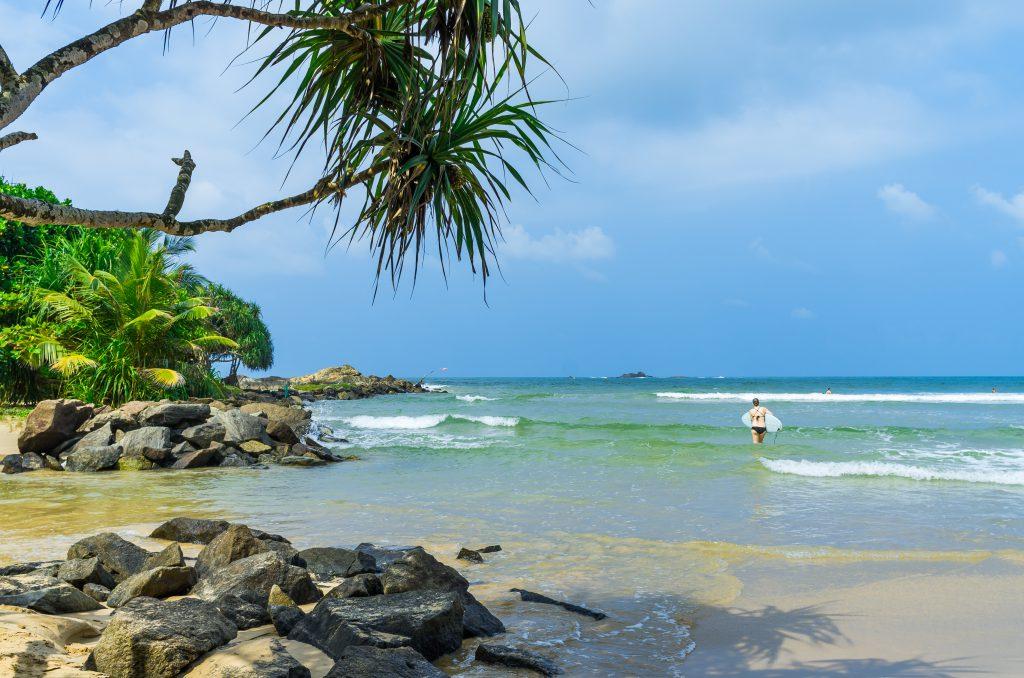 Tropischer Strand und Palme in Bentota in Sri Lanka