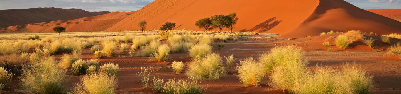 Unsere Reisen nach Namibia im Überblick
