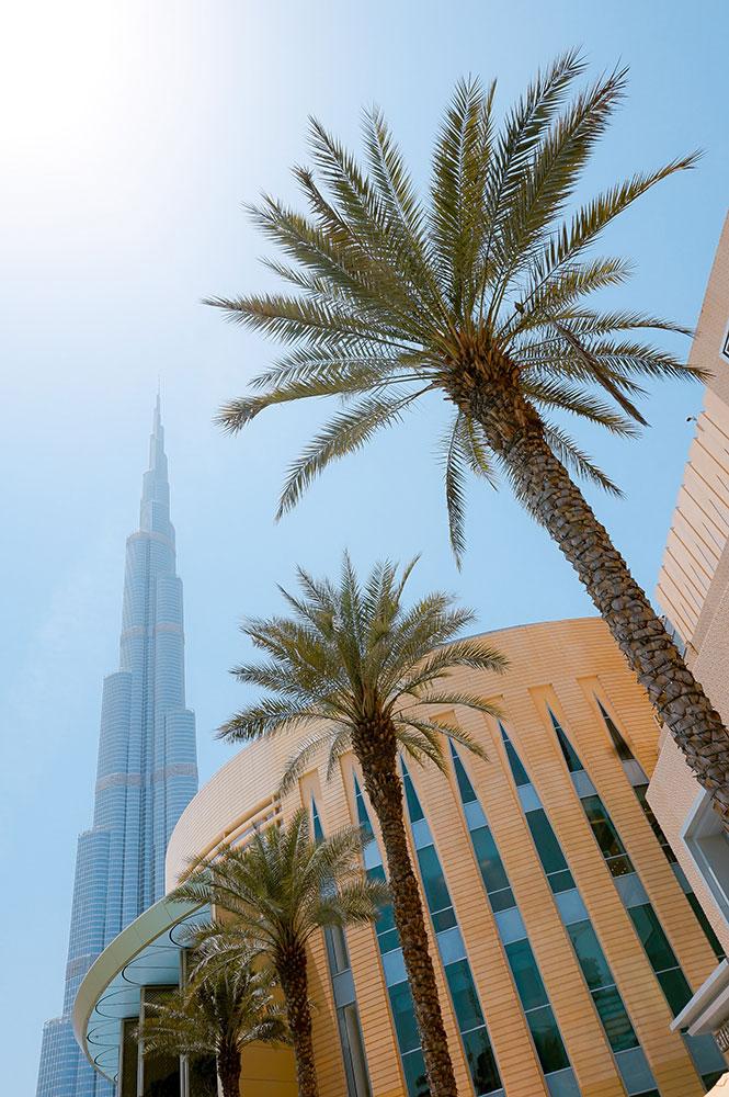 dubai burj khalifa palmen