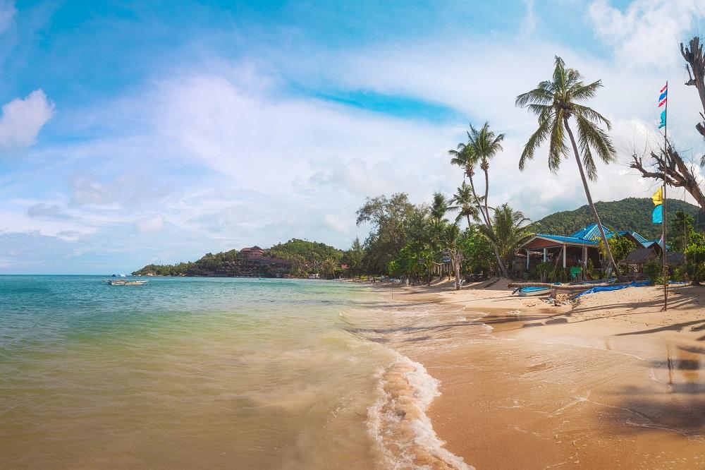 strand palmen meer insel koh phangan thailand